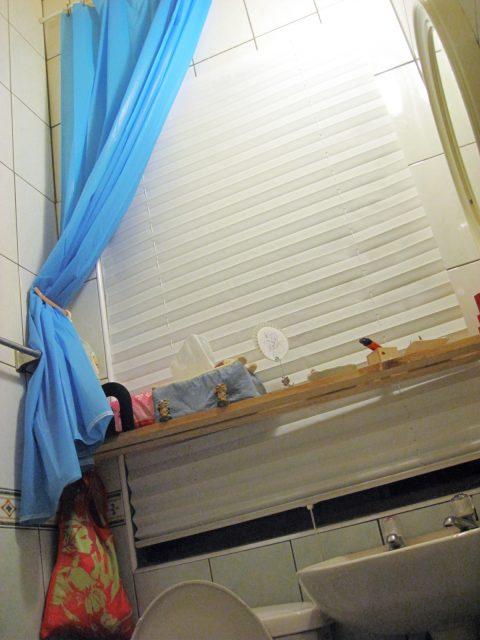 便利簾 免鑽孔窗簾 廁所窗簾 temp shades restroom