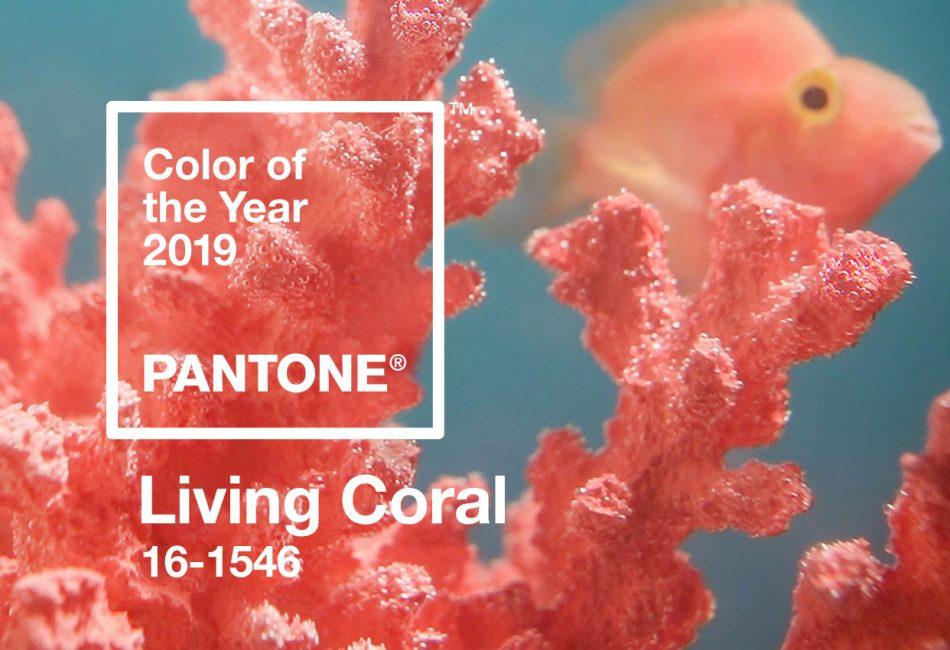 2018 Living Coral 950x650 - [分享] 2019年流行主色:Pantone 16-1546 活珊瑚橘 Living Coral