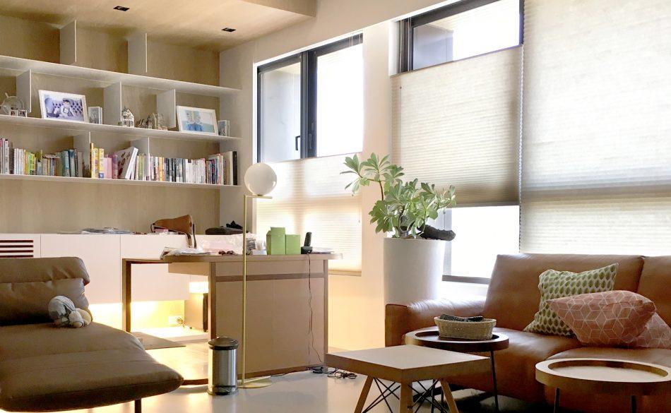 設計師窗簾 蜂巢簾 風琴簾 客廳窗簾 上下開窗簾