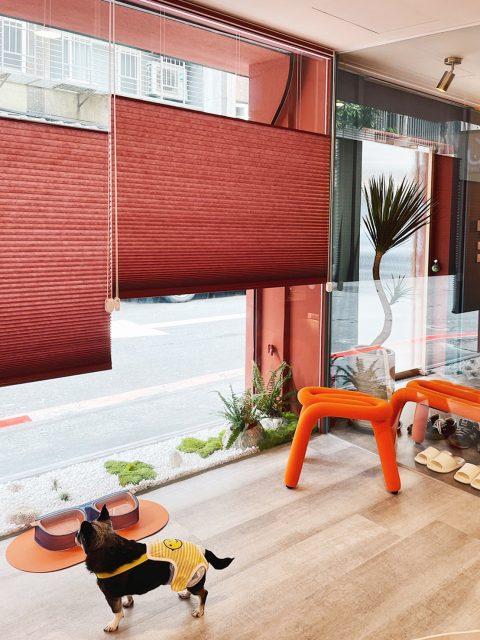 蜂巢簾 隔熱窗簾 省電 寵物 磚紅色